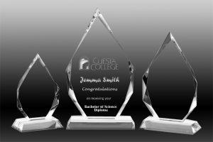Royal Diamond Crystal Award 280 mm x 160 mm